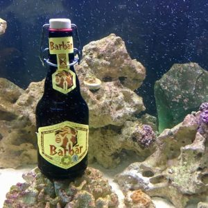 barbar underwater bottle